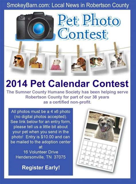 photo contest flyer template pets of the month september 2014 pet photo contest