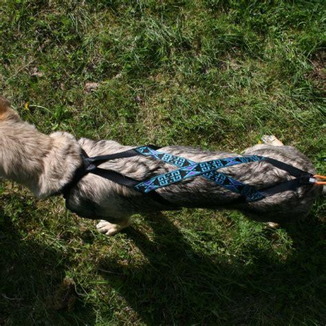 X Back kiwaq x back zuggeschirr mit fleece polsterung