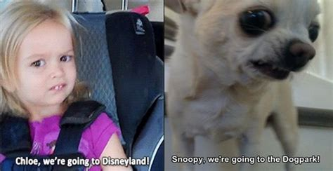 Chloe Disneyland Meme - these two both seem skeptical of the claims laid before