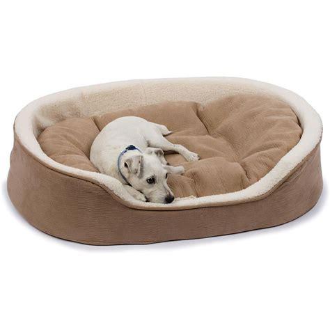dogs bed pinterest