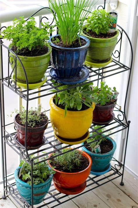 apartment herb garden plush  creativity
