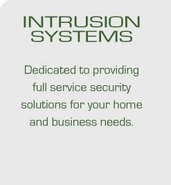 detection systems and service inc