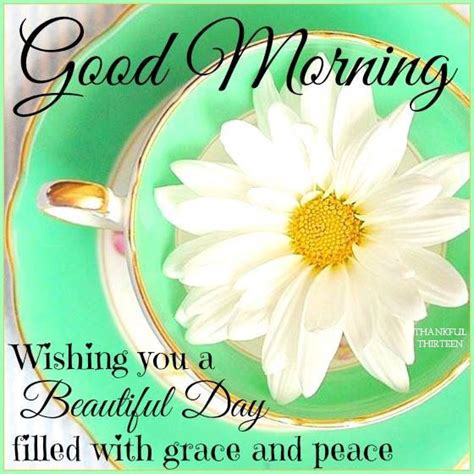 hello mornings how to build a grace filled giving morning routine books morning wishing you a beautiful day filled with peace