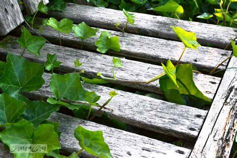 covered garden bench garden cheat the ivy covered garden bench funky junk interiorsfunky junk interiors