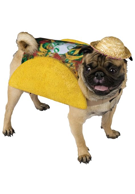 taco puppy taco costume