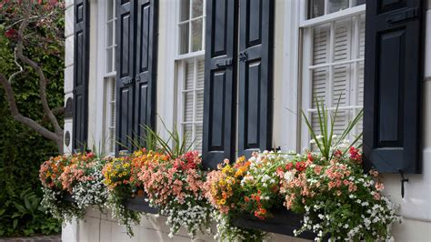 Window Planter by Window Box Planters Southern Living