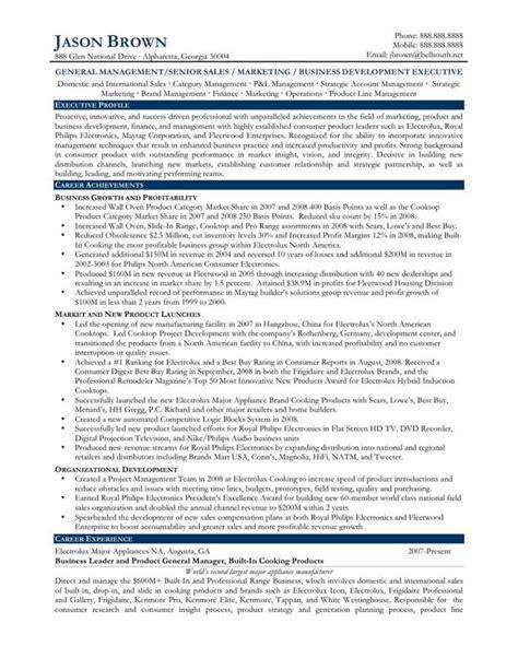 sales director sales director resume resume badak