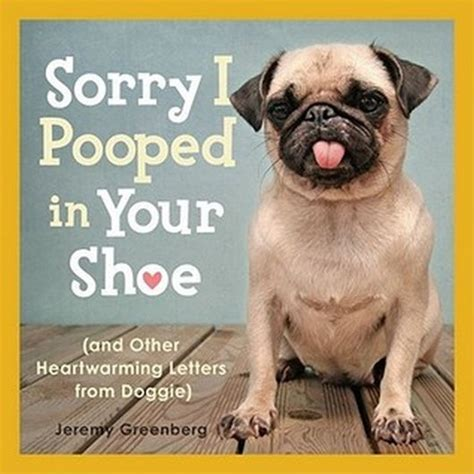 sorry pug 45 most pictures and images
