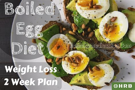 printable egg recipes boiled egg diet recipe 2 week plan for weight loss