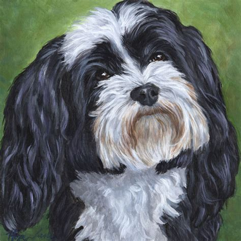 black havanese custom portrait black and white havanese painting