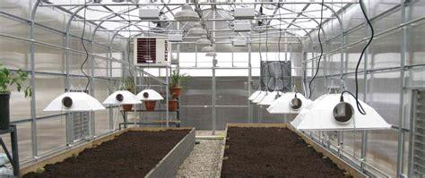 lade hps lade servono per la coltivazione indoor coltivazione