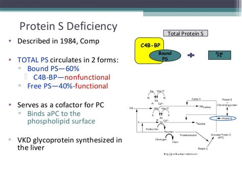 s protein deficiency coagulation assays
