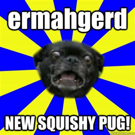 ermahgerd pug ermahgerd pug memes quickmeme