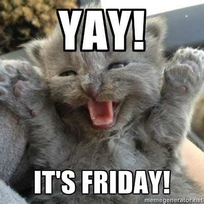 Thank Fuck Its Friday Meme - how i feel finally having the weekend off lolcats