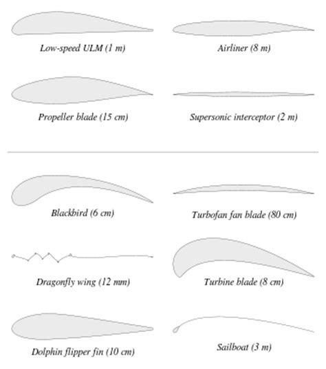 Kinds Of Sectioning by Airfoil