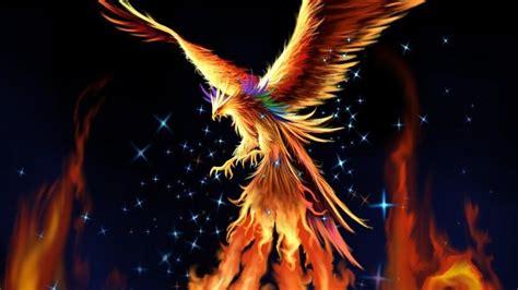 doodle god nedir bird wallpaper hd pixelstalk net