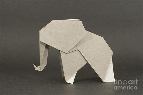 Elephant Origami - origami elephant photograph by nobi nagase