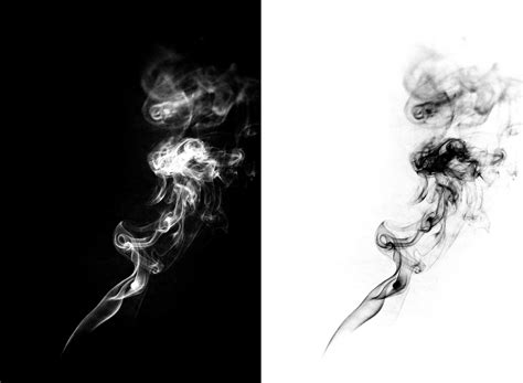 feeling light headed after smoking cigarette taking pictures of smoke anthony lee