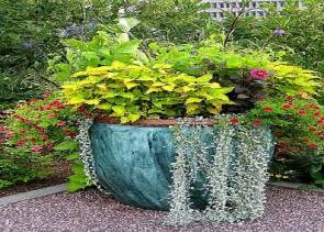 ideas for container gardens outdoor flower garden ideas photograph gardening ideas