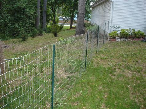 Backyard Fence For Dogs by Make Temporary Fence For Dogs Http Artoespacio