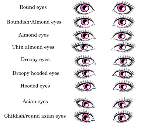 eyeliner tutorial for different eye shapes eyeshadow 101 step by step tutorial tips tiffany s