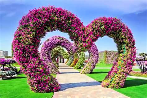 warna warni  juta bunga menghiasi taman bunga  moneyid