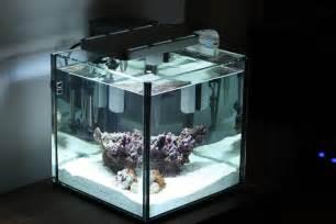 gal rimless, ELOS E light powered .   Members Aquariums   Nano