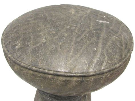 Real Elephant Foot Stool by Genuine Elephant Foot Taxidermy Stool Chair