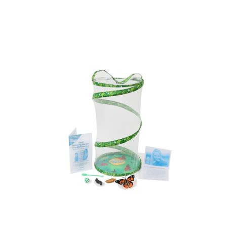 Butterfly Garden Kit by Butterfly Garden Raising Butterflies With