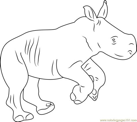 baby rhino coloring page rhino baby coloring page free rhinoceros coloring pages