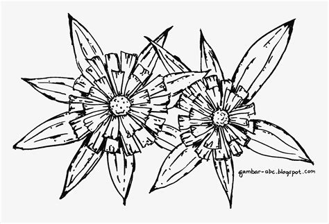 mewarnai gambar bunga bunga belajar mewarnai