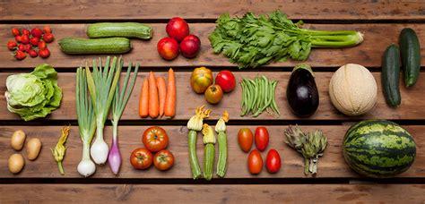 vitamina d alimenti vegetariani composizione alimenti vegetariani portale di
