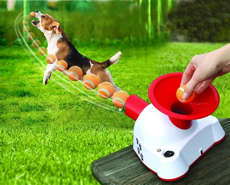 fetch machine gotcha talking fetch an automatic thrower launcher fetch machine ebay