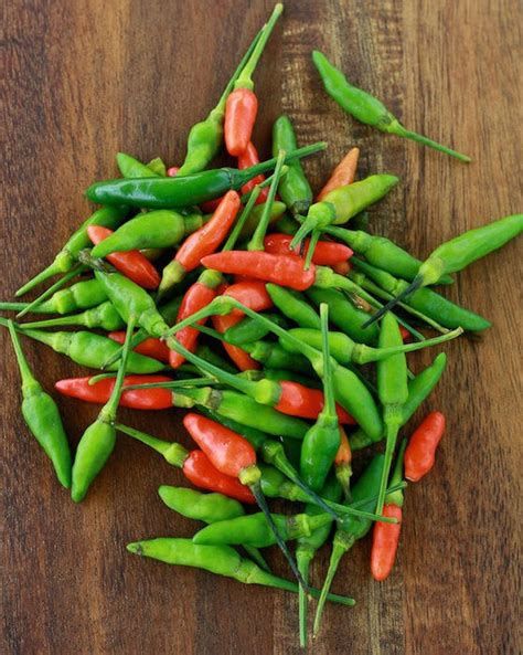 chili pepper info thai birds eye