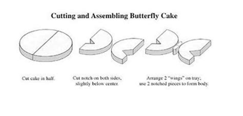 butterfly cake template pin butterfly cake template on