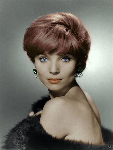 elsa martinelli pictures 57 best images about elsa martinelli on pinterest