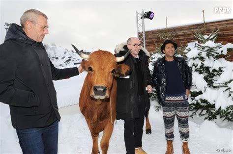 film la vache jamel debbouze lambert wilson et l 233 quipe du film la