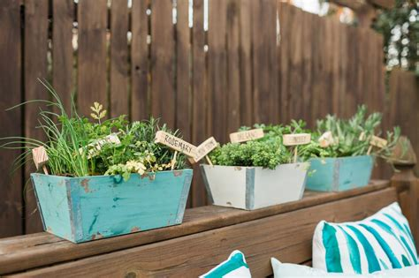 how to plant a mini herb garden hgtv