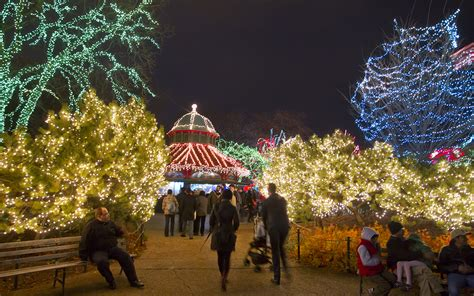 Light Up Your Holiday Season At Zoolights