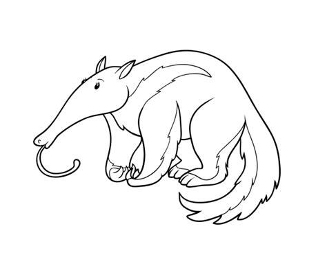 imagenes para pintar oso dibujo de un oso hormiguero para colorear dibujos net