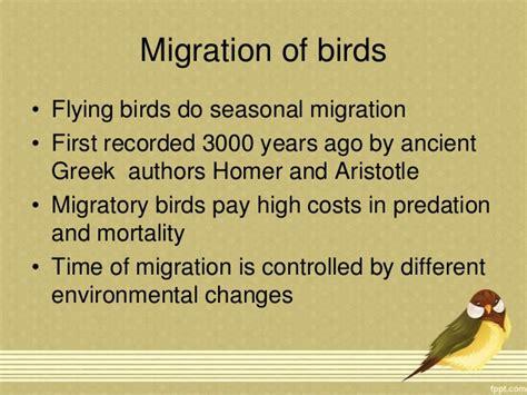 flightless birds and migration of birds