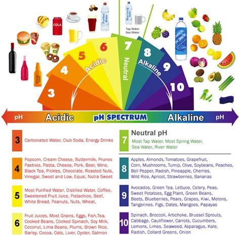 the acid amp alkaline foods list asana foods
