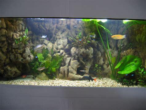 Decors Aquarium by D 233 Cor Aquarium R 233 Sine Epoxy Esth 233 Tique