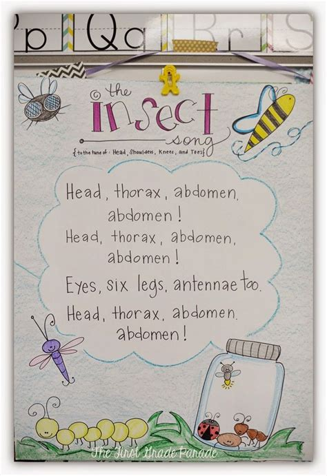 images of bee curriculum for preschool 107 best images about literacy poems on pinterest