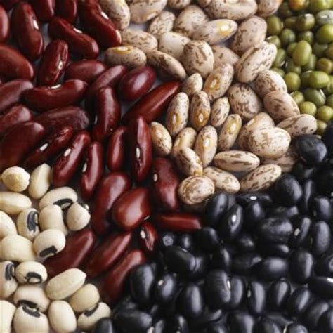 fruit zinc the highest zinc containing fruits foods livestrong