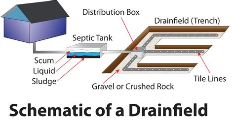 septic tank diagram drain field 301 moved permanently