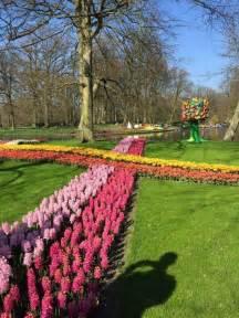 keukenhof tulip gardens near amsterdam thingtodoin amsterdam