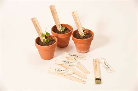 Seed Stick Planter by Student Spotlight Seed Stick The Dieline Packaging Branding Design Innovation News