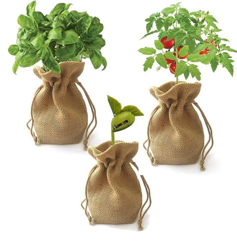 Vegetable Planterbag Sunflower Print sunflower jute bag grow set by beecycle notonthehighstreet