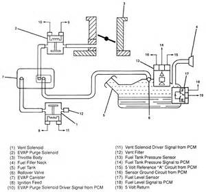 1996 Isuzu Rodeo Engine Diagram Egr Valve Location 93 Rodeo Get Free Image About Wiring